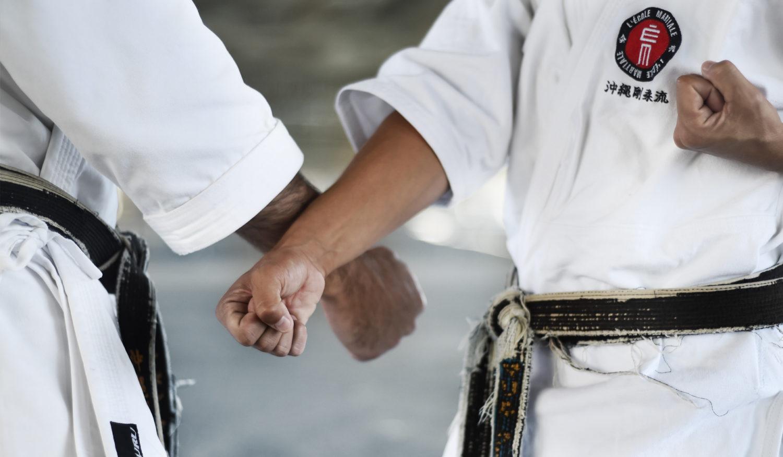 L'École martiale en action : Photos et vidéos
