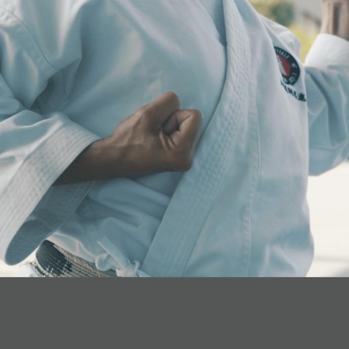 L'École martiale - Stage: La puissance de l'Hikite
