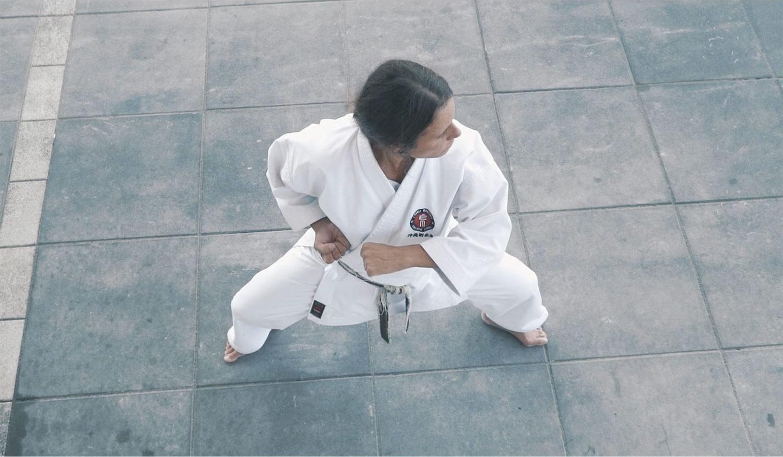 L'École martiale - Stage: À l'entour de Sepaï